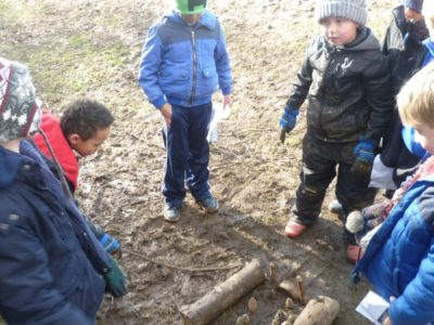 Week 4 at Forest School
