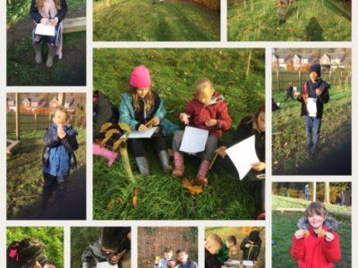 Year 4 Forest School – Week 2